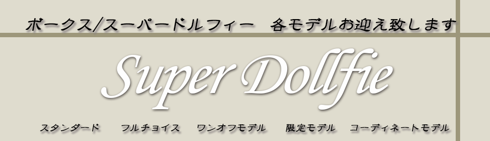 SD買取特集ページ